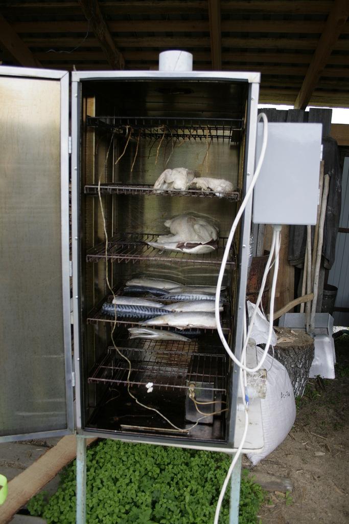 Коптильня горячего копчения из холодильника своими руками фото 47